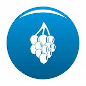 Bunch Grape Icon. Simple Illustration Of Bunch Grape Vector Icon For Any Design Blue poster