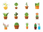 Potted Flowers Icon Set. Money Tree Cactus In Pot Cactus And Spray Bottle Plant Blooming Flower Chin poster