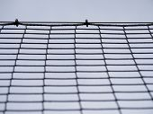 Football Gate Net With Bound Strings And Knots. Goal A Soccer Net With Green Grass Field poster