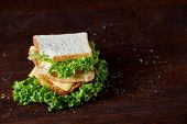 Tasty And Fresh Sandwiches On A Dark Wooden Background, Close-up. Yummy Sandwich With Cheese And Let poster
