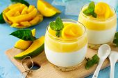 Mango Panna Cotta With Mango Jelly And Mint, Italian Dessert, Homemade Cuisine. poster