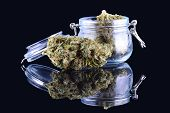 Medicinal Marijuana Cannabis In A Bottle. Cannabis Hemp Products In Jar. Cannabis Weed Bud Isolated  poster