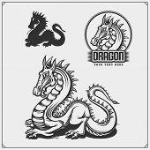 Dragon2.eps poster