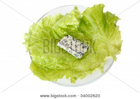 Blue Cheese On Leaf Lettuce