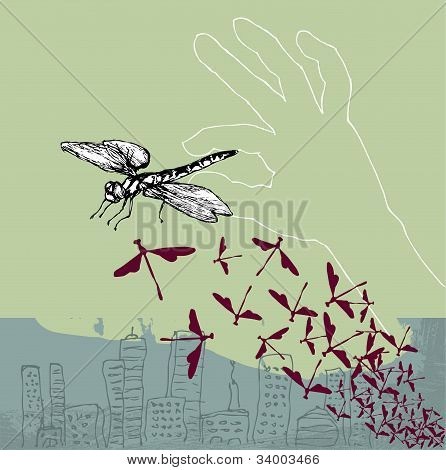 Dragonfly pinch