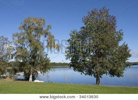 A minor lake behind a couple of trees.