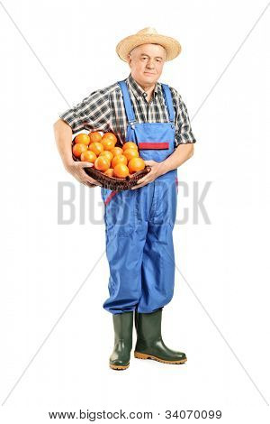 Full length portrait of a male farmer holding a basket full of oranges isolated on white background