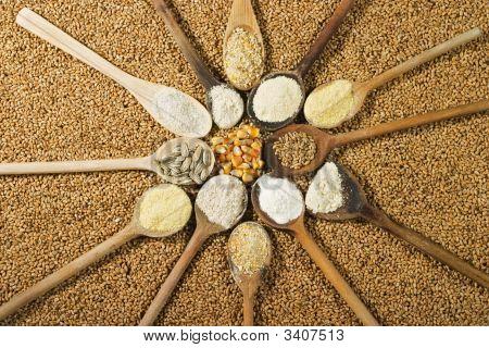 Various Types Of Flour