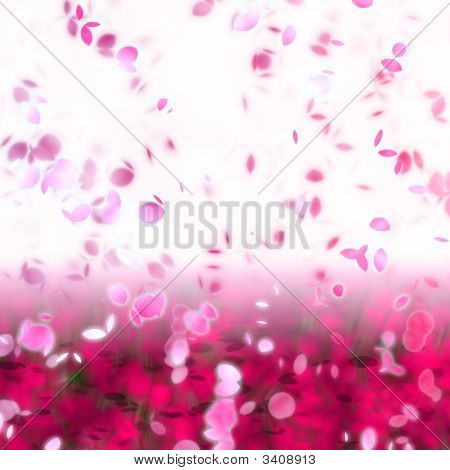Cherry Blossom Petals Swirling In The Wind