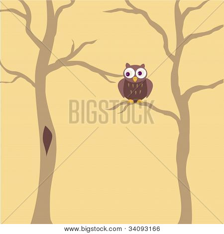 cute brown owl