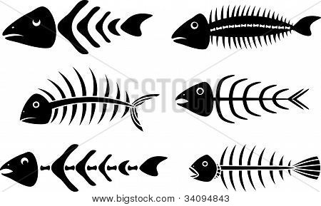 Various fishbones stencils