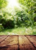 Empty Wood Table On Blurred Background Copy Space For Montage Your Product Or Design,blank Brown Boa poster