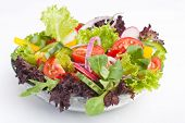 stock photo of romaine lettuce  - serving of healthy vegetables salad - JPG
