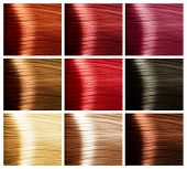 pic of hair dye  - Hair Colors Set - JPG