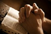 image of divine  - Hands closed in prayer on an open bible - JPG