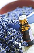 pic of essential oil  - Dried lavender herb and essential aromatherapy oil - JPG
