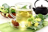 image of lime-blossom  - a cup of lime blossom tea with fresh flowers - JPG