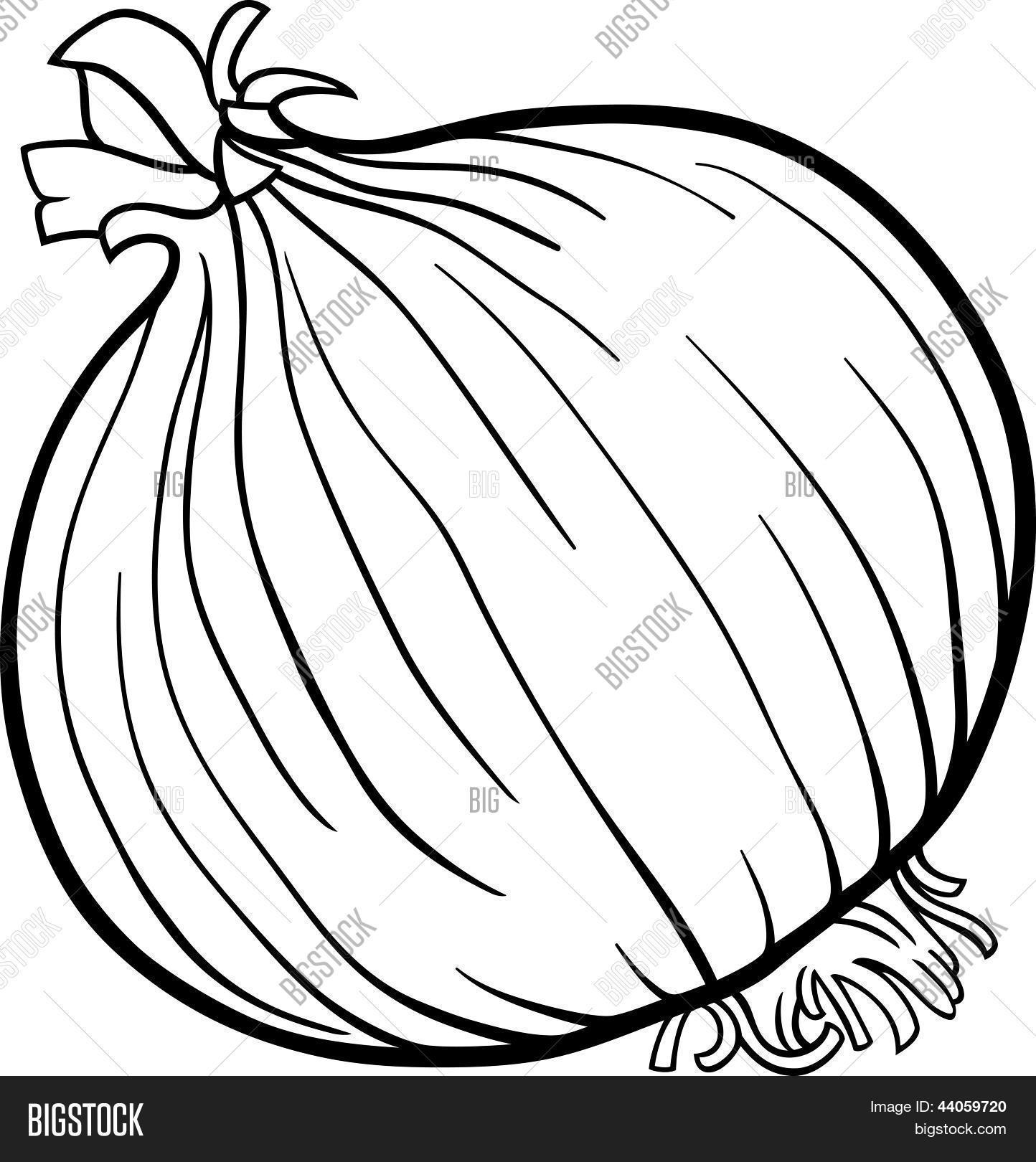 Vector y foto Cebolla Verduras Dibujos Animados  Bigstock