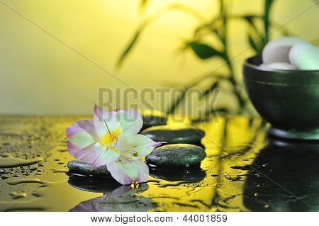 flower and burn candles on wet background