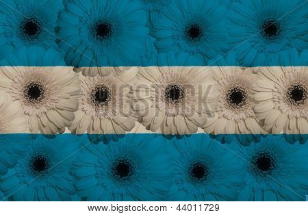 Stylized  National Flag Of El Salvador    With Gerbera Flowers