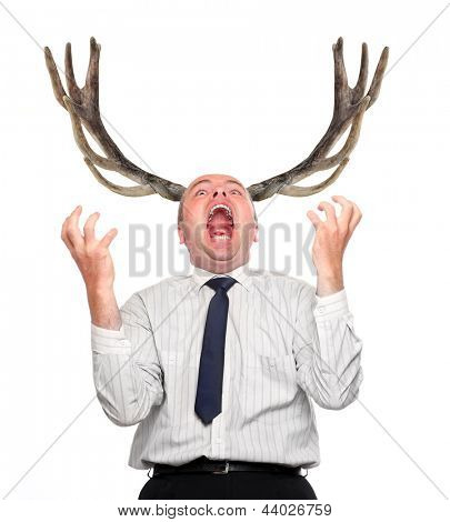 Funny picture of an stupid manager (husband) with great antlers. Incapacity concept.