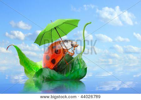 Little traveler on the funny boat. Rainy season concept.