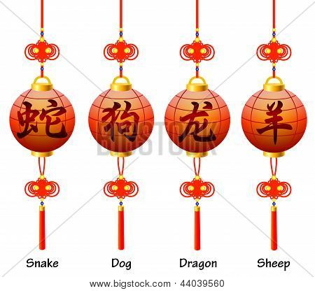 Chinese symbols on the lantern. Signs of the Zodiac. Dog dragon snake sheep.