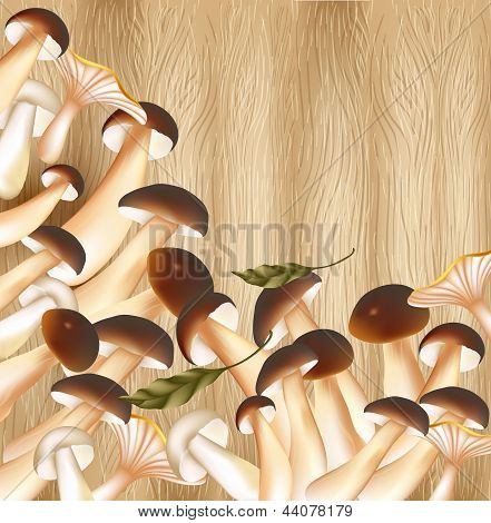 Cute Vector  Organic Mushrooms On A Hardwood Background