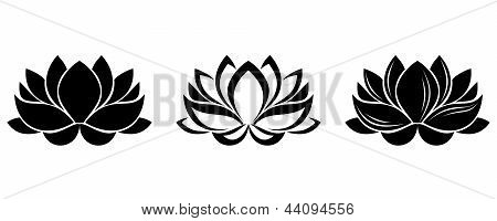 Lotus flowers silhouettes. Set of three vector illustrations.