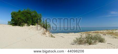 Landscape Curonian Spit