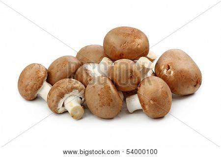 Brown champignons isolated on white background