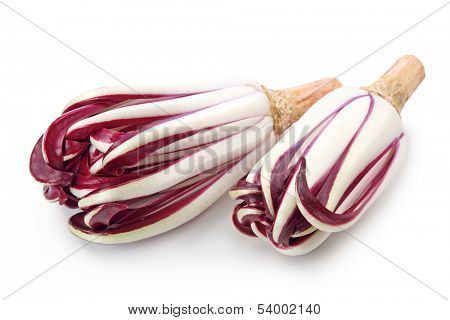 The Radicchio Rosso di Treviso isolated on white background