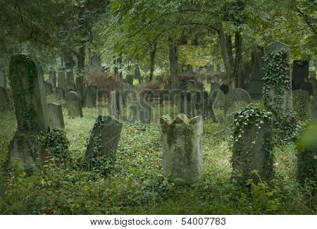 Old jewish cemetery in Vienna