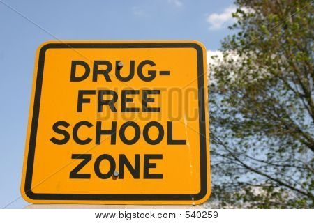 Drugfree School