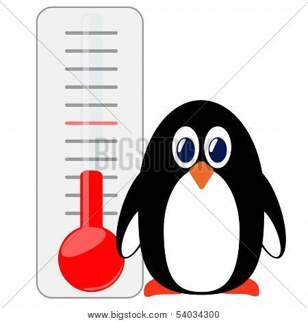 Penguin of thermometer.