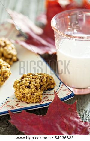 Pumpkin oat cookie on a plate with milk