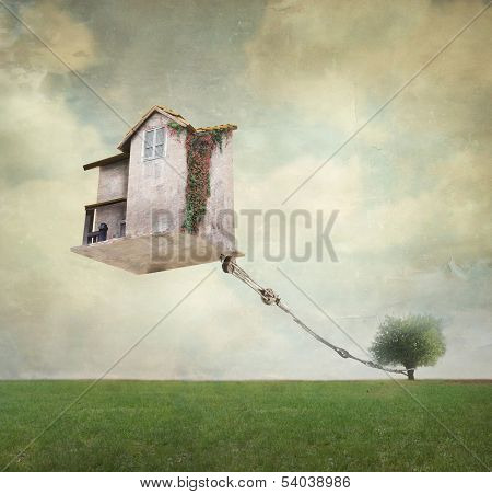 Surreal House