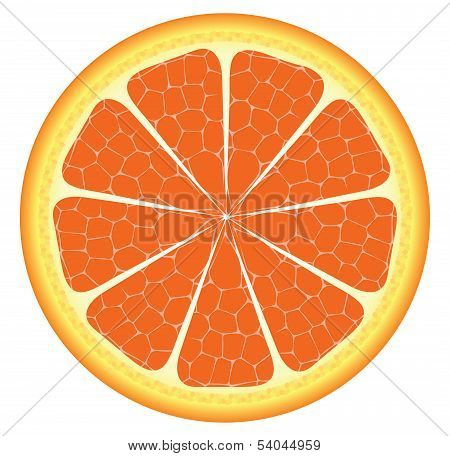 Orange Piece Or Slice