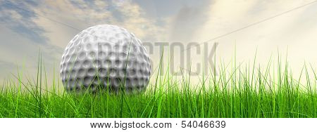 Green, fresh and natural 3d conceptual grass over sunset sky background banner with  golf ball at horizon