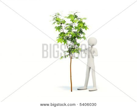 Hombre con Tree0000