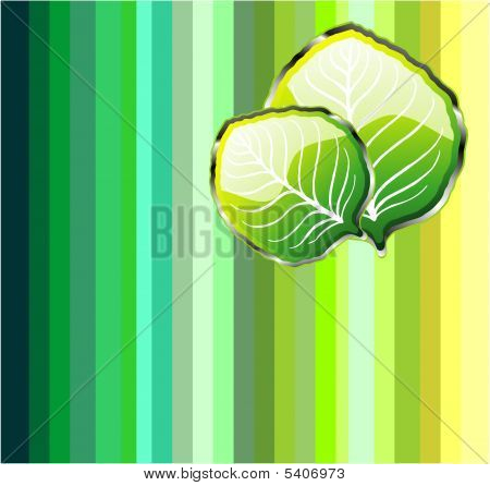 Go Green Leaf Background with high contrast colors