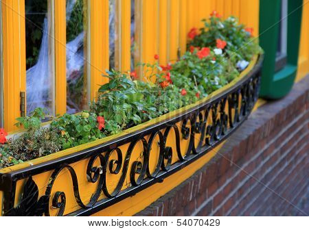 Bright yellow window and flowers