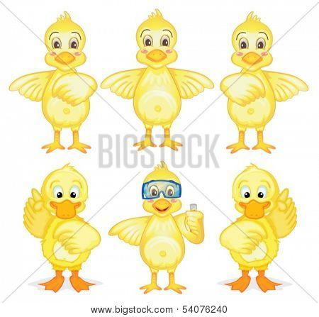 Illustration of the six ducklings on a white background