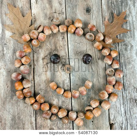 Smiling Face Of Acorns On A Wooden Background