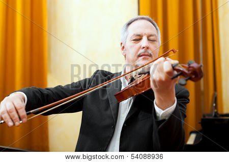 Senior violinist portrait