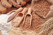 picture of whole-wheat  - Wood spoons with whole wheat grains - JPG