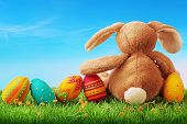 stock photo of white rabbit  - Colorful easter eggs and rabbit on green grass - JPG