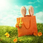 stock photo of hare  - Easter present with rabbit and easter eggs - JPG
