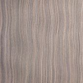 Ebony Wood Texture, Tree Background