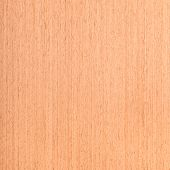 Walnut Wood Texture, Wood Grain